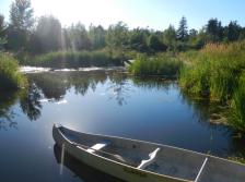 salish sucker pond